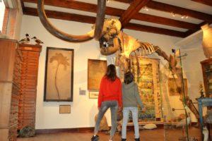 Museum Natura Docet Wonderryck Twente